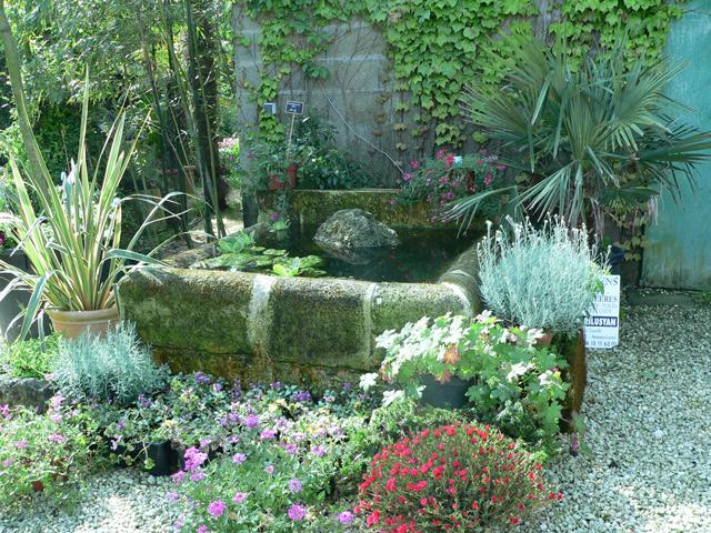 St Phane Guillot P Pini Res Cr Ation De Jardins